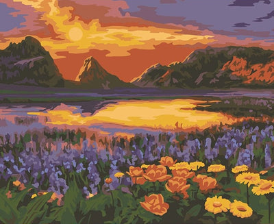 Meadow in Glowing Sunset -  Paint By Numbers Kit