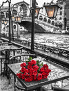 Venice Rose - Paint By Numbers Kit
