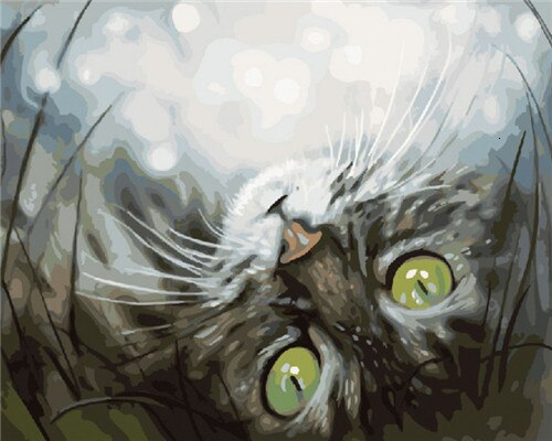 Upside Down Cat - Paint By Numbers Kit