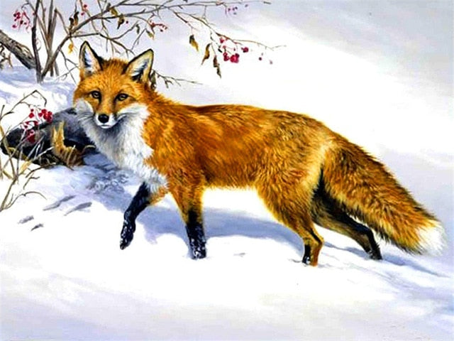 Fox in Snow - Paint By Numbers Kit