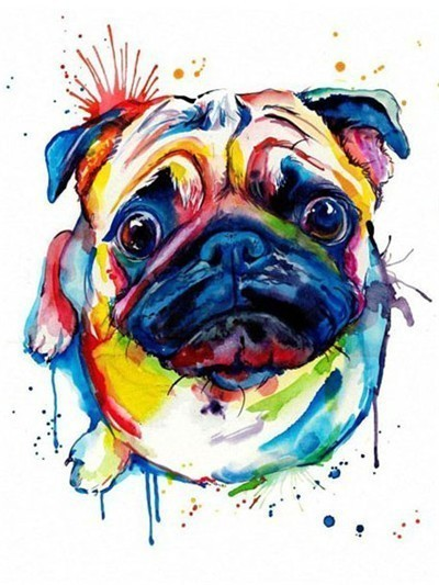 Colorful Pug Dog - Diamond Painting Kit