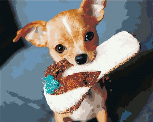 Chihuahua Sandal - Paint By Numbers Kit