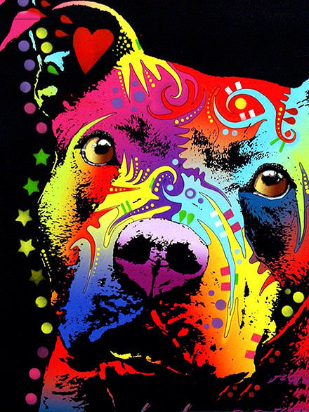 Colorful Pittie - Paint By Numbers Kit