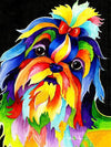 Colorful Shih Tzu - Paint By Numbers Kit