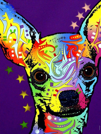 Colorful Chihuahua - Paint By Numbers Kit