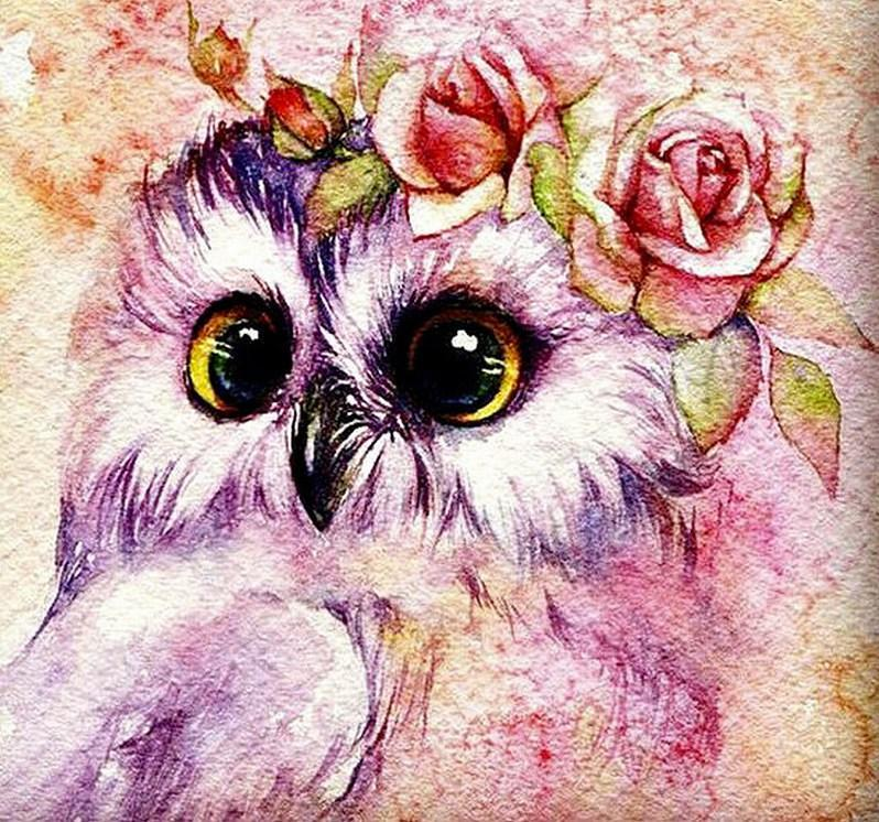 Cute Owl - Diamond Painting Kit