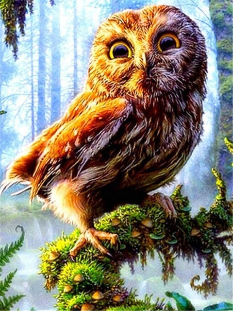 Owl on Branch - Diamond Painting Kit