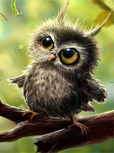 Baby Owl - Diamond Painting Kit