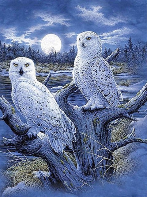 White Owls in Moonlight - Diamond Painting Kit