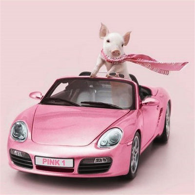 Pink Pig in Pink Convertible - Diamond Painting Kit
