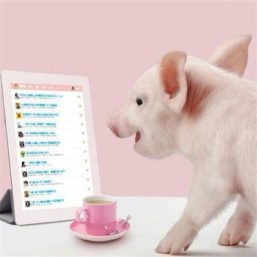 Pink Pig and iPad - Diamond Painting Kit