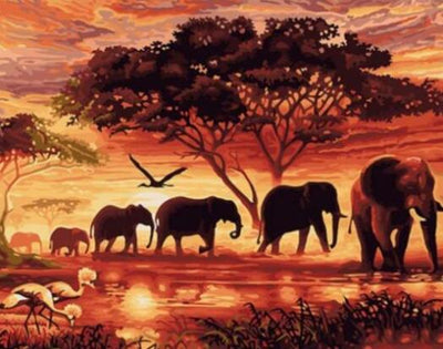 Sunset Elephants - Paint by Numbers Kit
