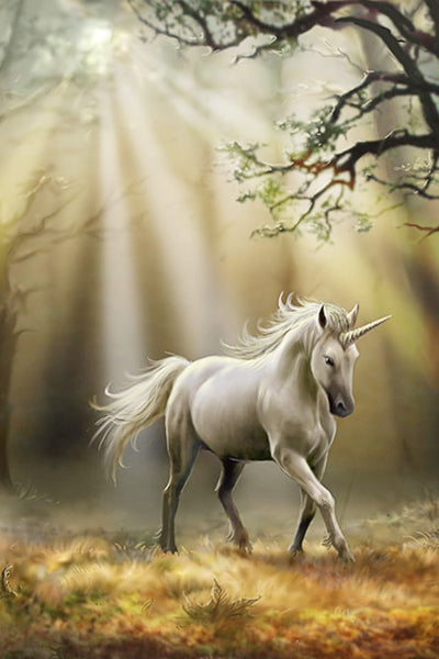 White Unicorn - Diamond Painting Kit