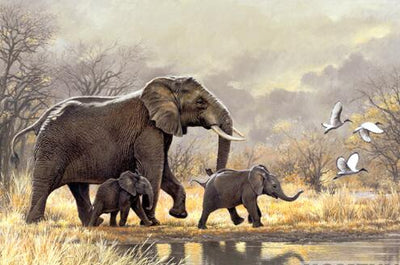 Elephants Family - Diamond Painting Kit