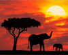 Savannah Elephants at Sunset - Paint By Numbers Kit