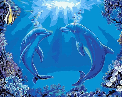 Sea Life Dolphin Dance - Paint By Numbers Kit