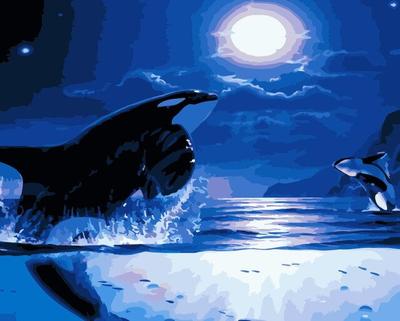 Sea Life Killer Whales - Paint By Numbers Kit