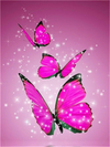 Sparkly Fuschia Butterflies - Paint By Numbers Kit