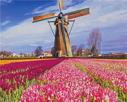 Windmill and Pink Tulips - Paint By Numbers Kit