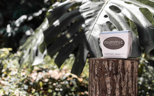 Mimmic take out box resting on top of a tree stump, with palm leaves and green plants in the background.