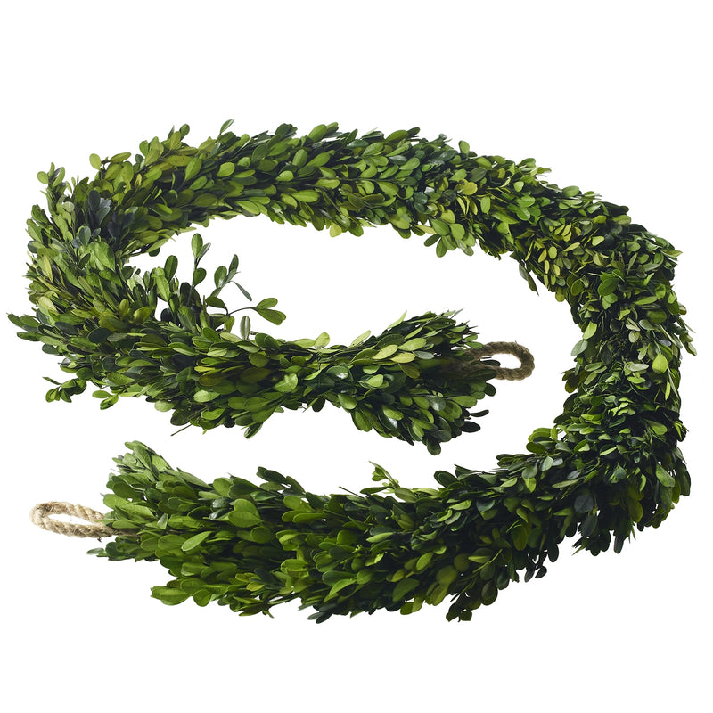 Boxwood Garland 8 Foot (Natural Preserved)