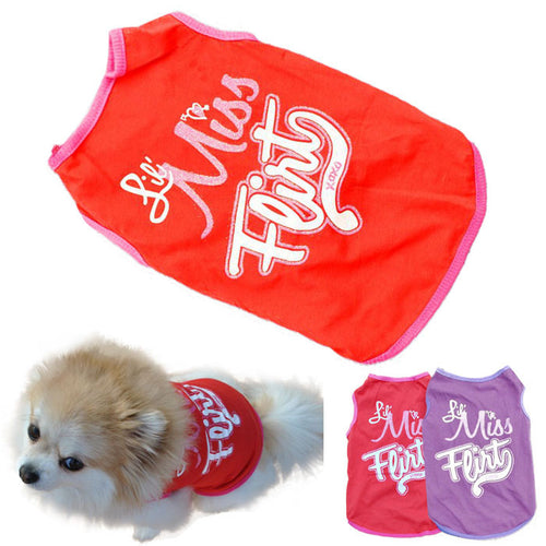 New Winter Warm Pet/Dog Clothes Small Waterproof