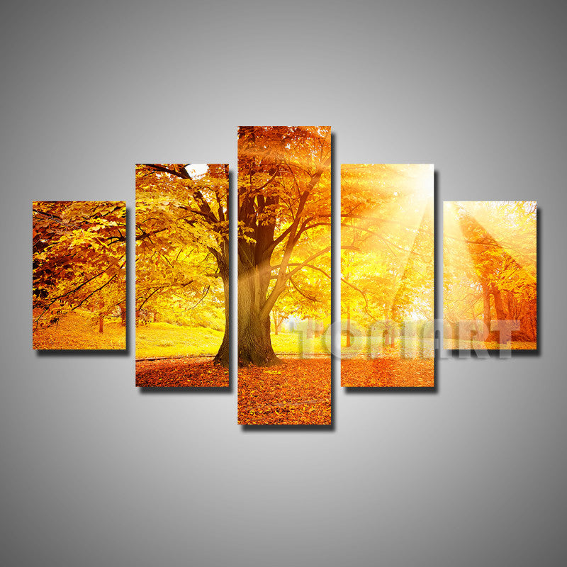 5 Panels Art Canvas Print Beautiful Forest Trees Autumn Fog Morning Sunshine Wall Painting Home Office Interior Decor (No Frame)