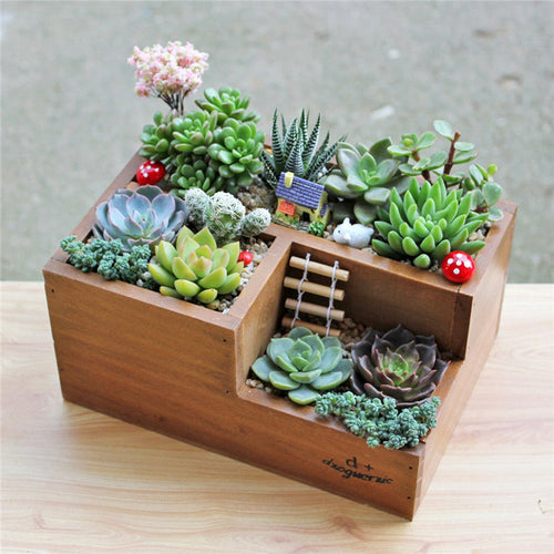 Wooden Garden Planter Window Box with Succulent Flower Herb Plant Bed