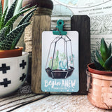 begin anew succulent #TheAdoptShoppecard