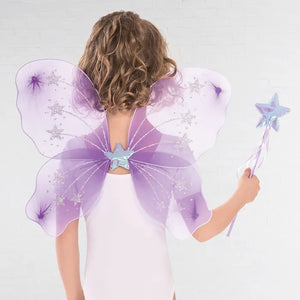 Fairy Wings and Wand Set