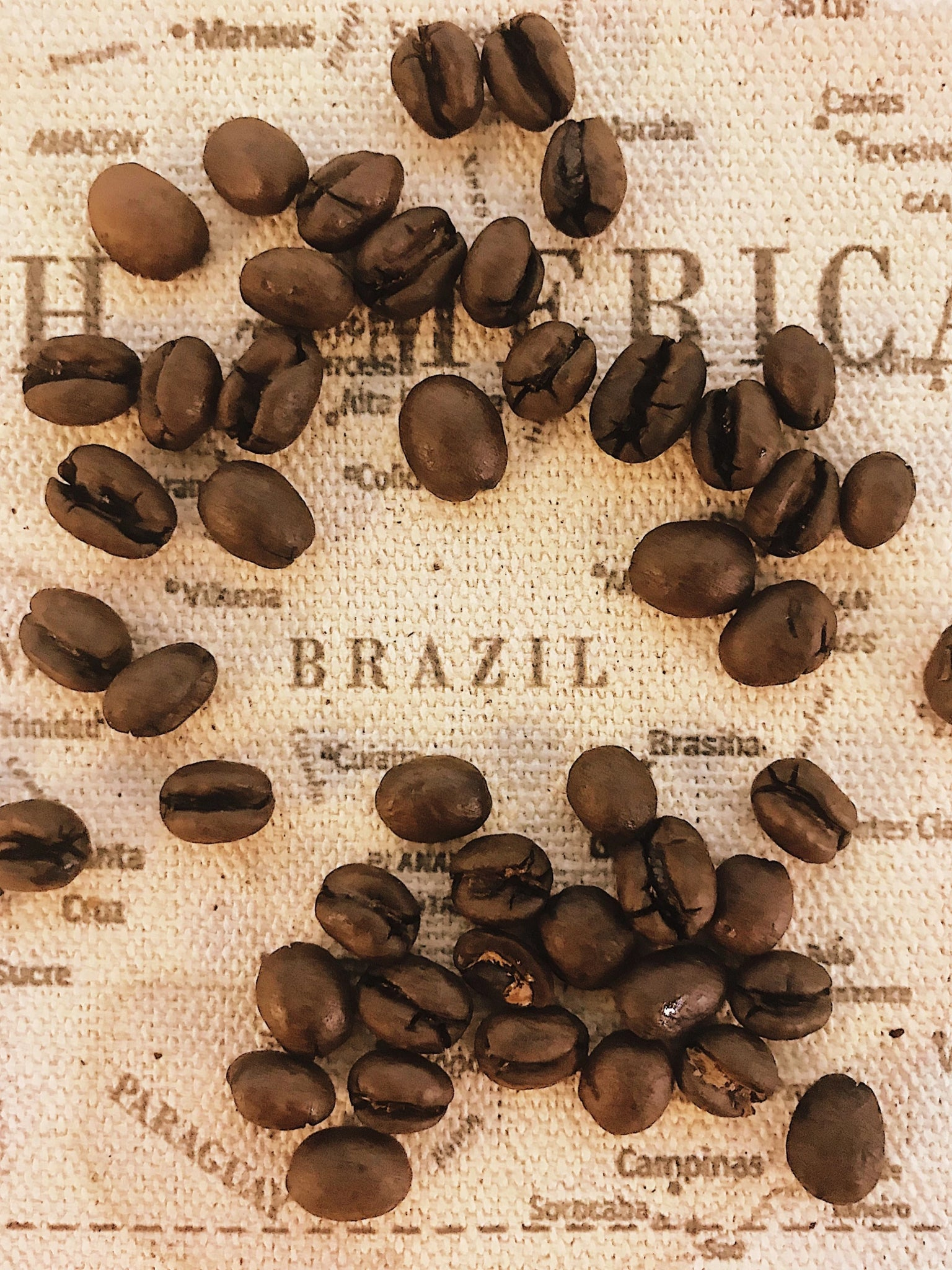 BRAZIL ALTA MOGIANA SAO FRANCISCO ESTATE MOKKA PEABERRY