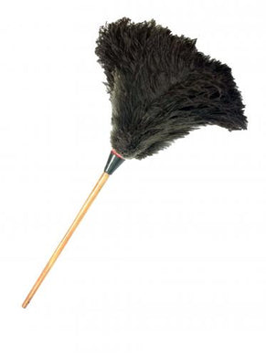 Ostrich Feather Duster With Wooden Handle