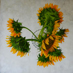 Sunflower - You Are Sunshine Above All - The Art of Katherine Jeans