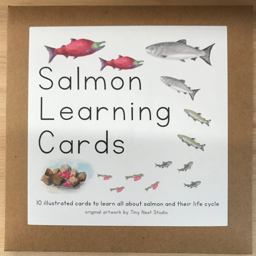 Salmon Learning Cards