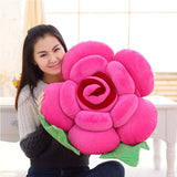 Valentine's Day Flowers Super Soft Plush Pillows