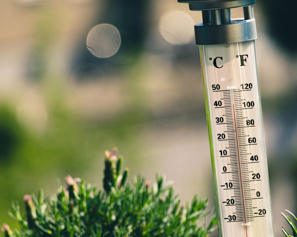 Tips to Stay Cool Summer Heat