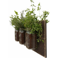 Mason Jar Wall Planter Dark Wood
