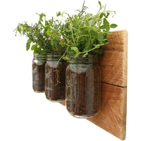 Mason Jar Wall Planter Reclaimed Wood