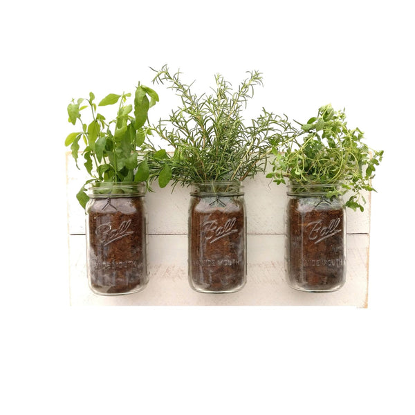 Mason Jar Wall Planter White / Shabby Chic