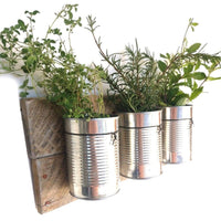 Tin Can Wall Planter Reclaimed Wood