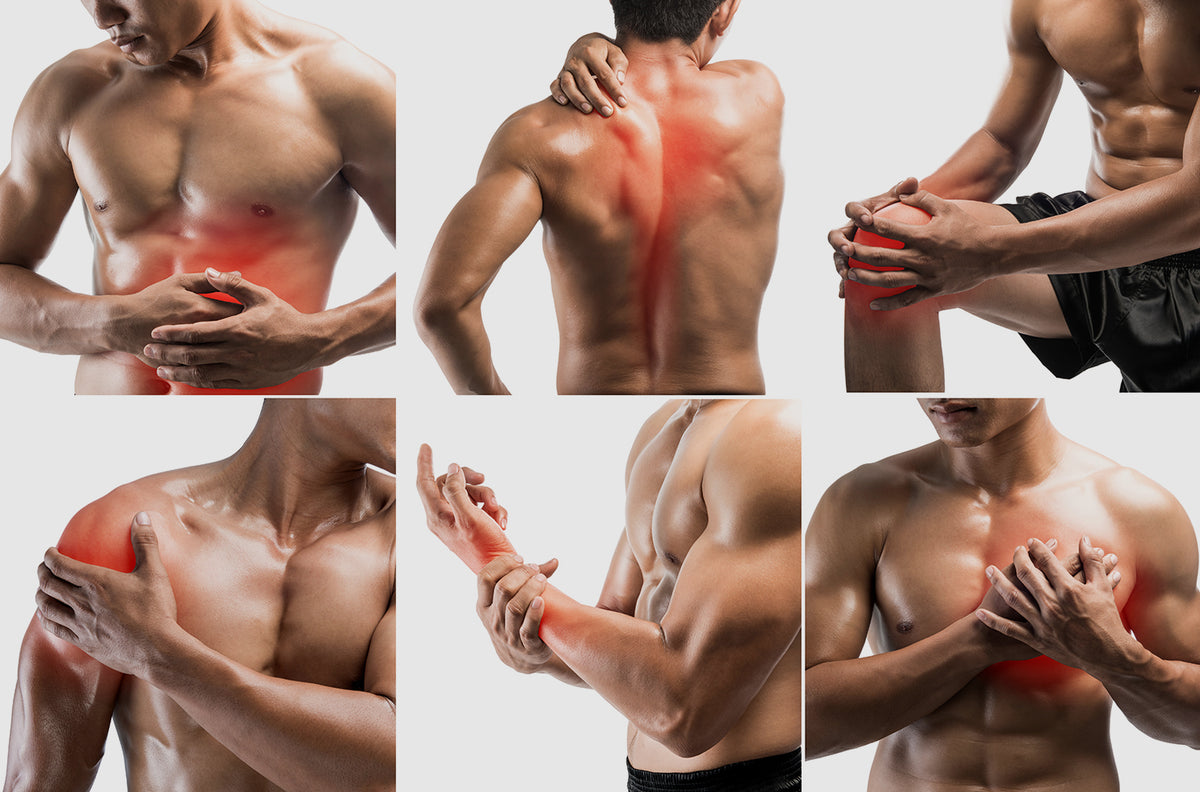 What causes my muscle pain?