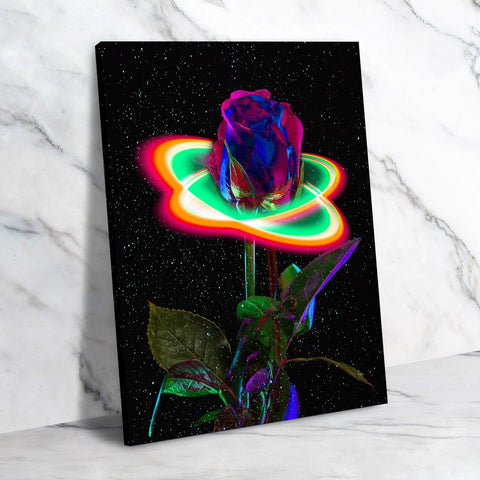 Starlit Rose Canvas Set