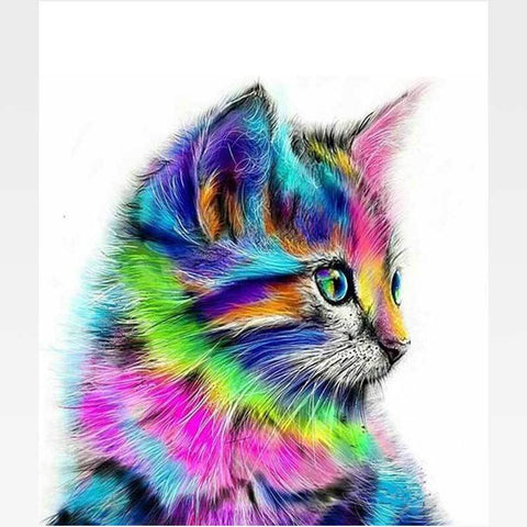 Abstract Colorful Cat Paint-By-Numbers Kit