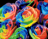 Colorful Rainbow Roses Paint-By-Numbers Kit