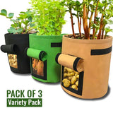 PlantPro™ Potato Grow Bag Variety Pack - Pack of 3 (All Colors)