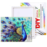 Proud Peacock Paint-By-Numbers Kit 16 x 20 (in) / 40 x 50 (cm) / With Frame