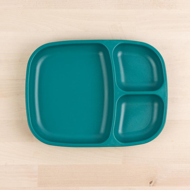 Large Divided Tray