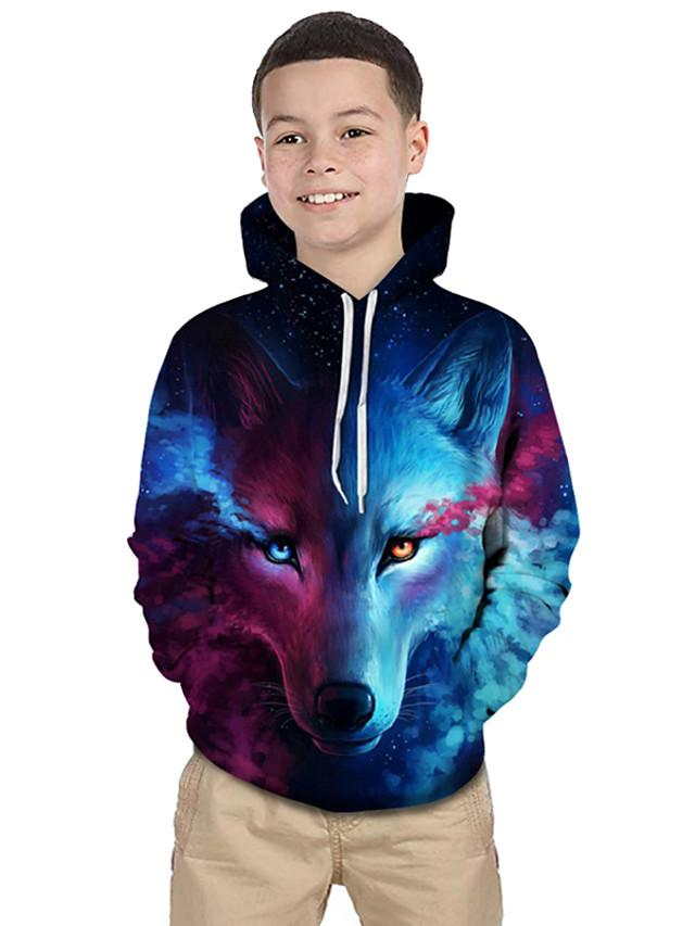Kids Toddler Boys' Active Basic Wolf Geometric Color Block 3D Print Long Sleeve Hoodie & Sweatshirt Blue