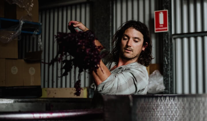 Winemaker Ryan O