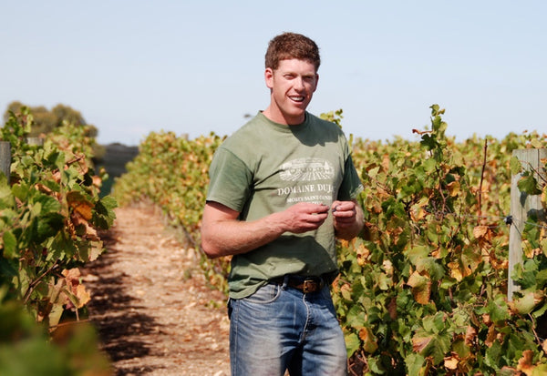 Nick Farr in the vineyard